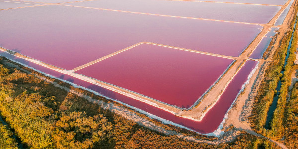 Pink Salt Lakes in Salin de Giraud, France